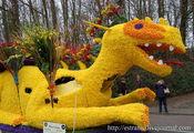 Желтый дракон / Нидерланды
