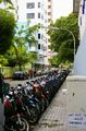 Мото / Мальдивы