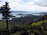 Вид на барские владения / Новая Зеландия