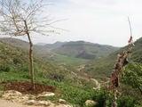Вид на округу / Ирак
