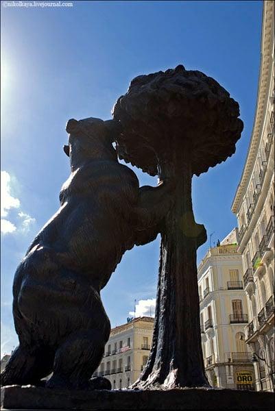 Медведь на площади Пуэрта-дель-Сол - символ Мадрида / Фото из Испании