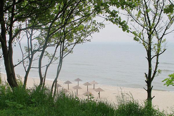 Вид на Балтийское море и пляж в Янтарном / Фото из России