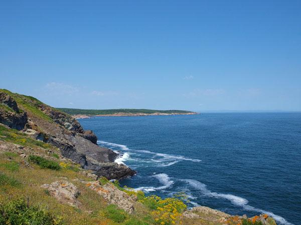 Побережье Болгарии - это не только пляжи / Фото из Болгарии