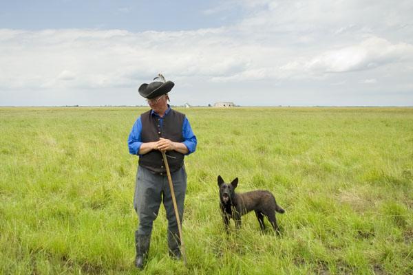 Пастух и собака в бескрайней Хортобадьской пусте / Фото из Венгрии
