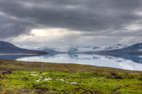 Арктическое лето на Шпицбергене / Фото со Шпицбергена