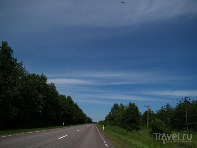 Дорога на острове Муху / Фото из Эстонии