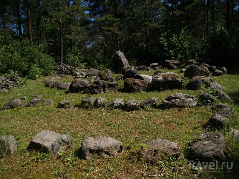 Стоянка древнего человека в местечке Мяла / Фото из Эстонии