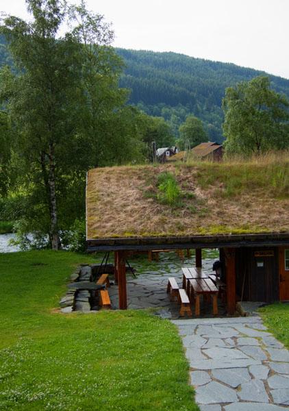 Дерн на норвежской крыше - типичная картина / Фото из Норвегии