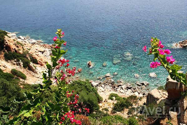 Изумрудные воды побережья Сардинии / Фото из Италии