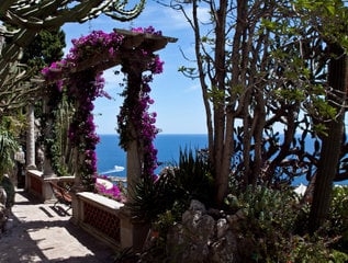 Парк экзотических растений / Монако