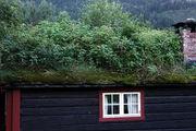 В ладу с природой / Норвегия