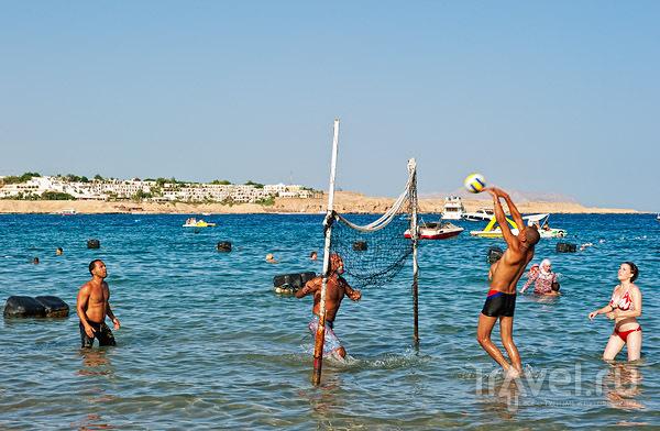 На пляже в Наама-Бей, Шарм-эль-Шейх / Фото из Египта