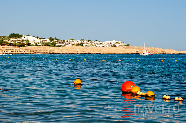 В бухте Наама-Бей, Шарм-эль-Шейх / Фото из Египта