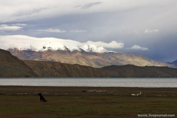У озера Манасаровар на Тибете / Фото из Китая