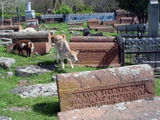 Кладбище / Армения