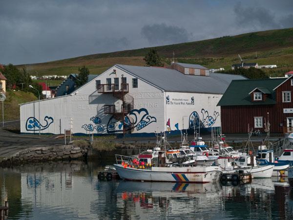 Белое здание - китовый музей в Хусавике / Фото из Исландии
