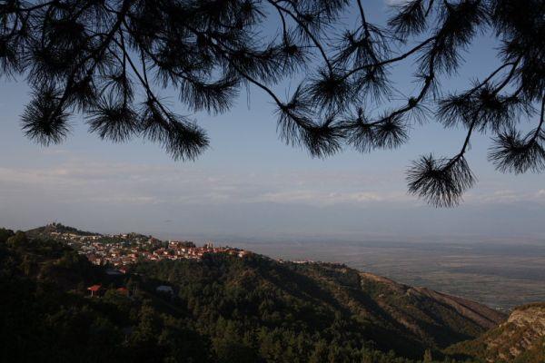 Вид Сигнахи, Грузия / Фото из Грузии