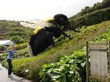 Гигантская пчела / Великобритания