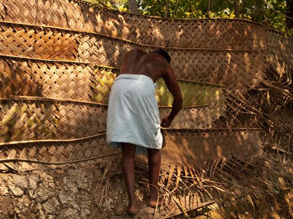 Плетение стены из листьев кокосовых пальм, остров Munroe / Фото из Индии