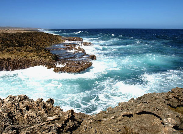 На побережье Кюрасао / Фото с Кюрасао