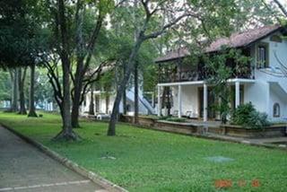 Территория отеля / Шри-Ланка