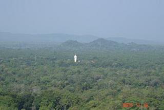 Белая статуя будды / Шри-Ланка