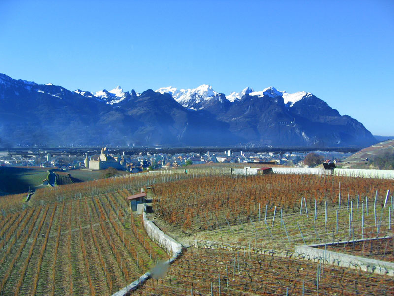 Вид на Эгль и его замок со склона / Фото из Швейцарии