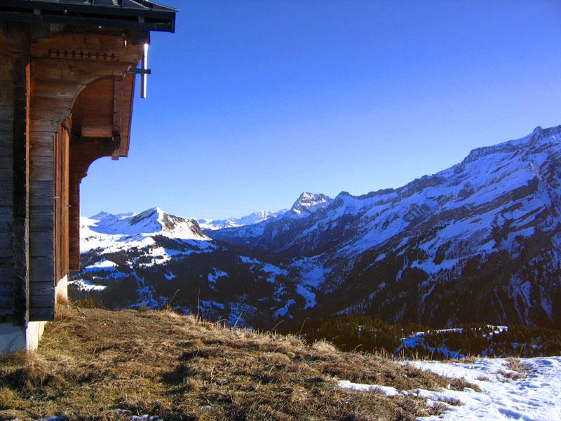 Снег есть далеко не везде / Фото из Швейцарии