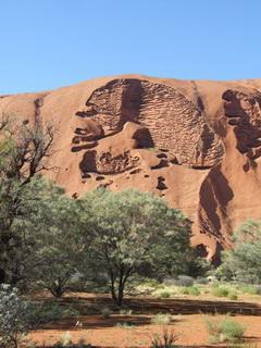 Пещеристое тело / Австралия