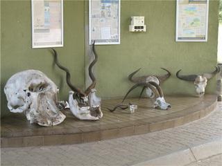 КПП на въезде / Ботсвана