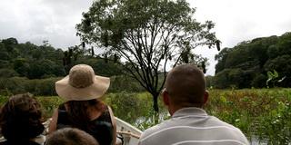 Туристы  / Суринам