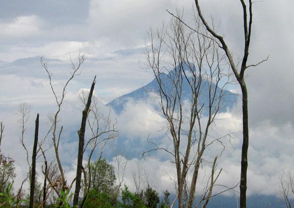 Вулкан Ньирагонго в Конго / Фото из Конго (бывш. Заир)