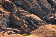 Гигантский моаи / Чили