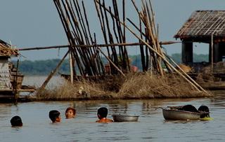Природа тазиков / Камбоджа