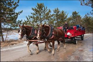 Катание на лошадях / Канада
