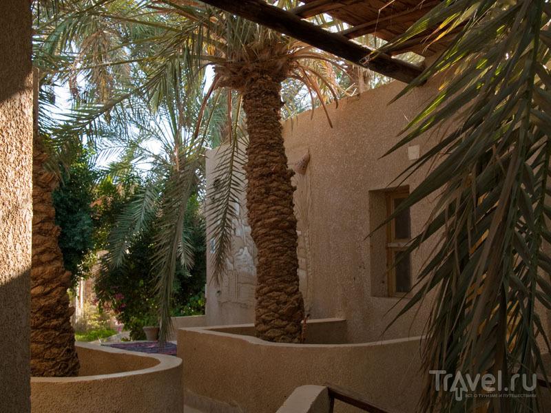 Домики в отеле Old Oasis, Бавити / Фото из Египта