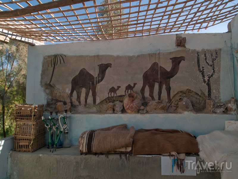 Кафе в оазисе Таб-Ламун (Tab Lamun) / Фото из Египта