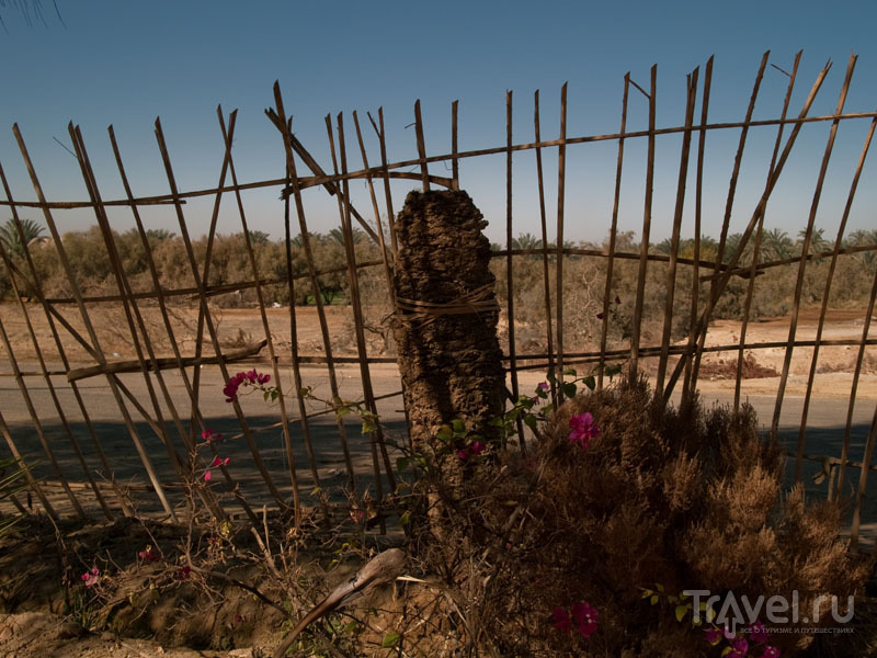 В оазисе Таб-Ламун (Tab Lamun) / Фото из Египта