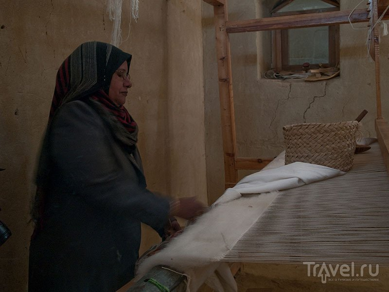 Центр Al Hayah в оазисе Фарафра / Фото из Египта