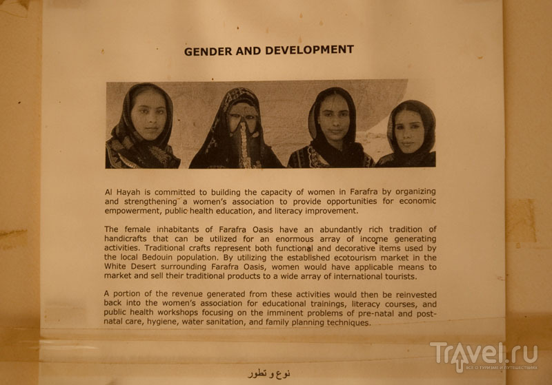 Объявление в центре Al Hayah в оазисе Фарафра / Фото из Египта