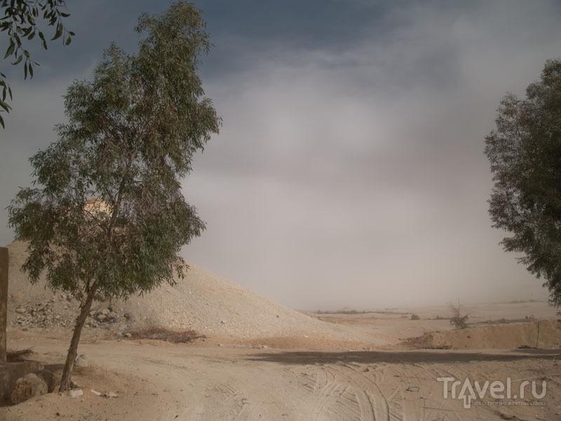Выезд из Фарафры / Фото из Египта