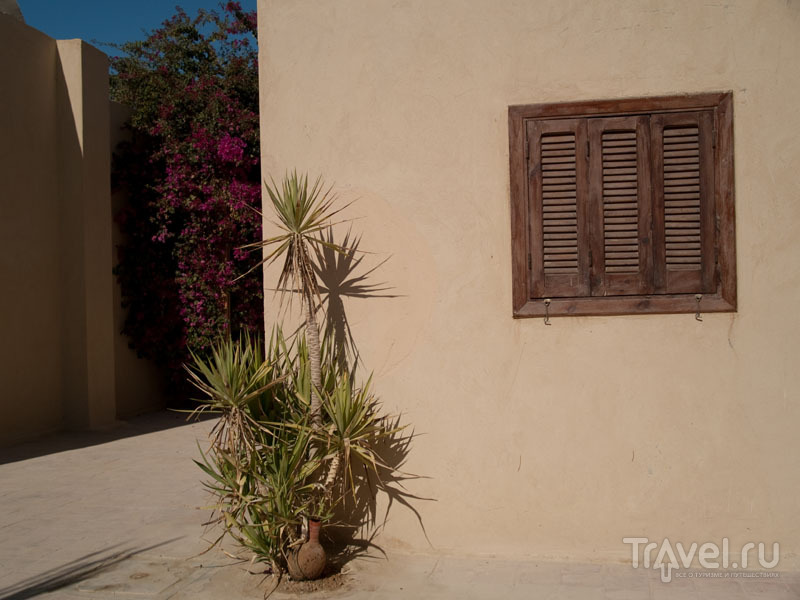Отель Badawiya в оазисе Фарафра / Фото из Египта