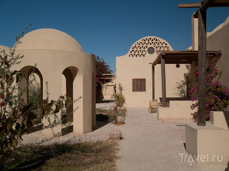 В отеле Badawiya в оазисе Фарафра / Фото из Египта