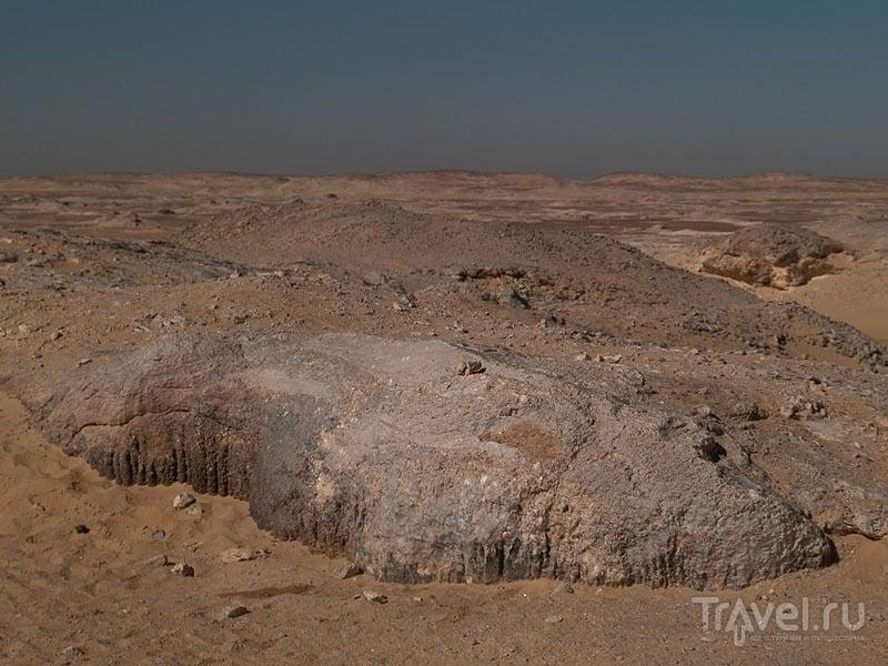 Скалы в Белой пустыне / Фото из Египта