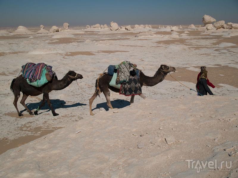 куда ехать в хургаду или шарм эль шейх