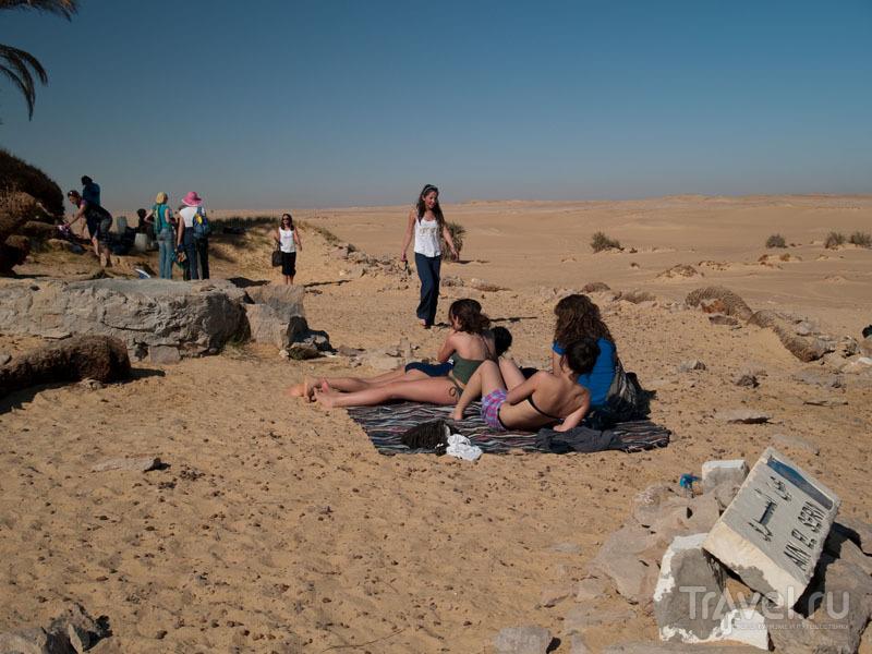 Оазис Айн-эль-Серв (Ain-el-Serw) / Фото из Египта