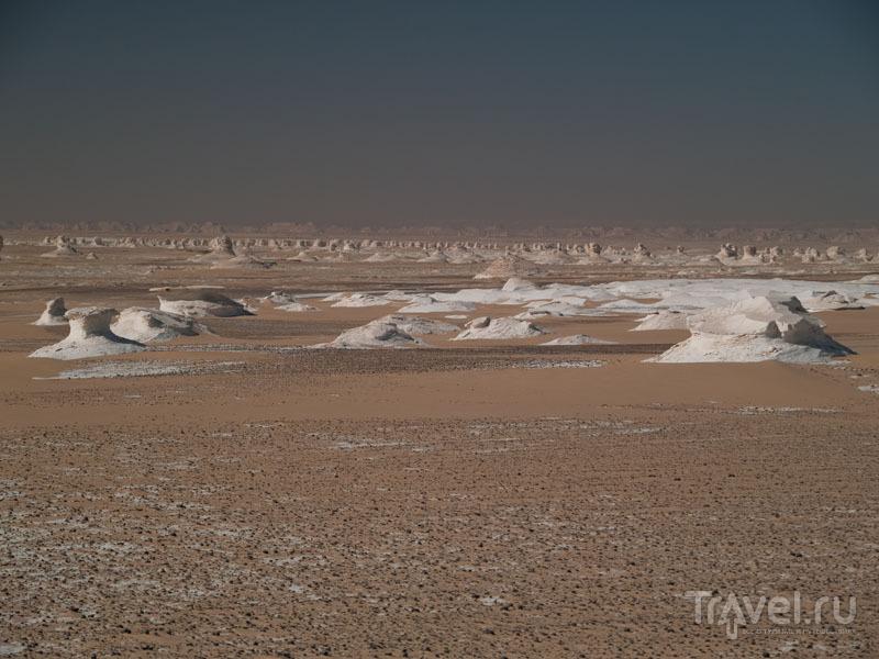 Меловые образования в Белой пустыне / Фото из Египта