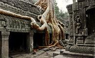 Оригинальная обработка / Камбоджа