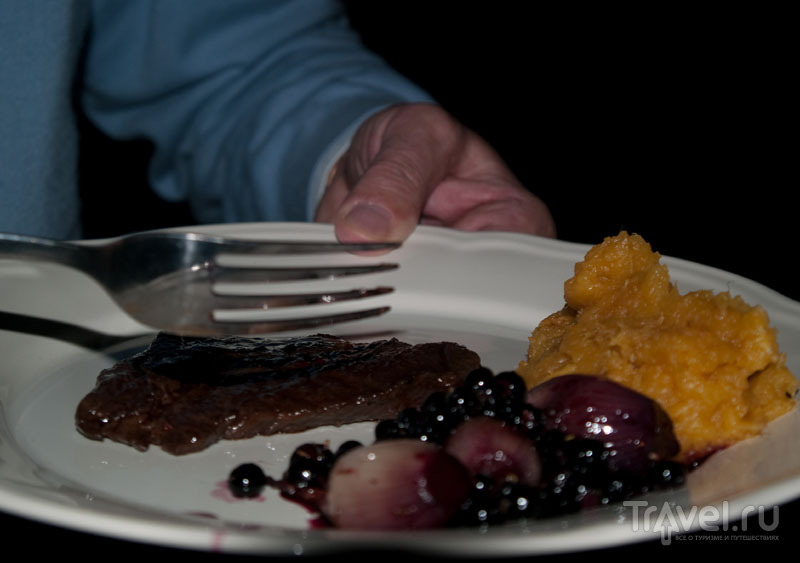Жареное мясо кита, пюре из топинамбура и маринованный лук с голубикой / Фото из Исландии