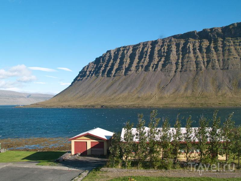 Идиллическая картина Западных фьордов Исландии / Фото из Исландии